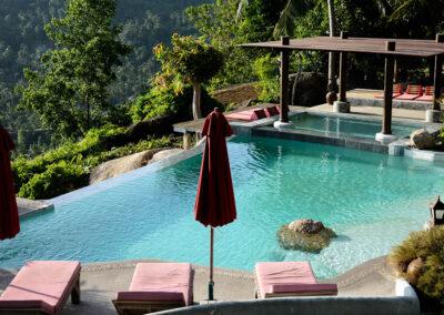 paradise pool interiors the jungle club 01 1