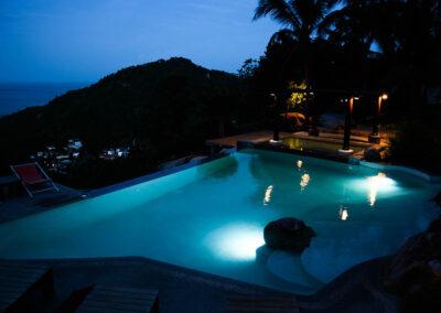 paradise pool interiors the jungle club 04